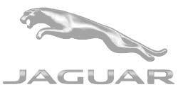 Jaguar-(1)