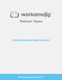 what-do-successful-teams-look-like