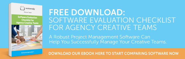Agency Software Evaluation Checklist